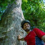 Arbor environnement - Johan Legrand