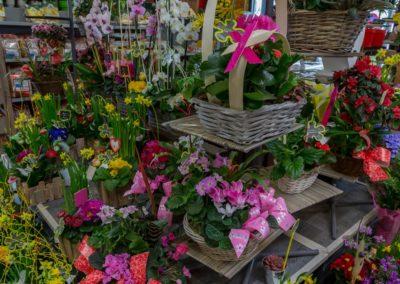 Garden-Flor Saint-Florentin Yonne10