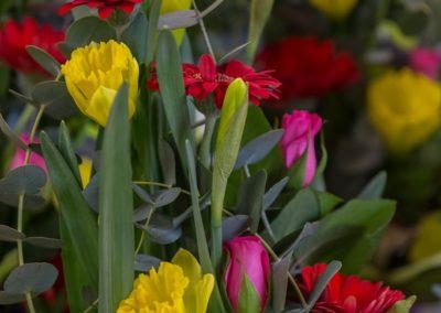 Garden-Flor Saint-Florentin Yonne24