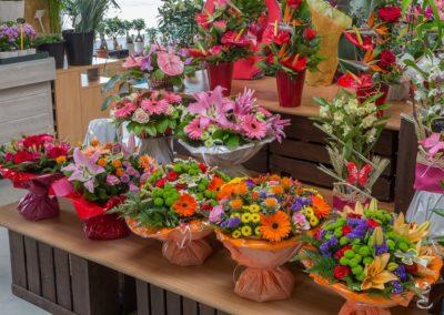Garden-Flor Saint-Florentin Yonne3