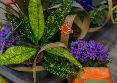 Garden-Flor Saint-Florentin Yonne30
