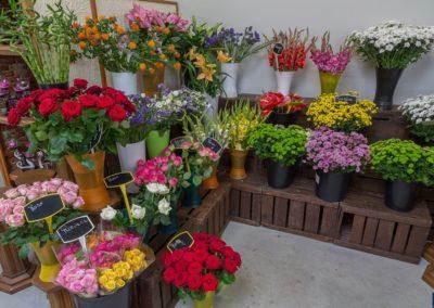 Garden-Flor Saint-Florentin Yonne4