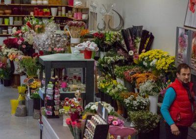 Garden-Flor Saint-Florentin Yonne52