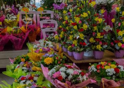 Garden-Flor Saint-Florentin Yonne8