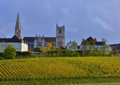 clos de la Chainette Auxerre vignes et paysages  - © Liliane Privé