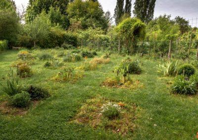 2019 05 17 - Jardin du Prieuré - 02