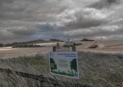 2019 07 16 - Aqueduc de la Vanne-29