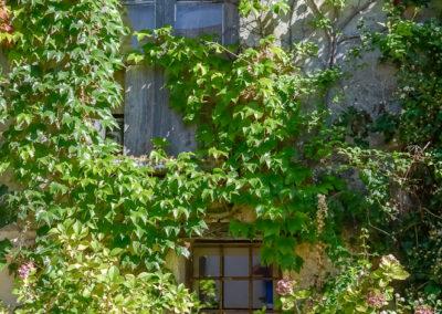 2019 11 20 - Noyers sur Serein en BOURGOGNE-118