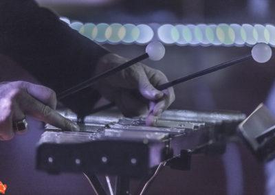 2019 14 - Musicien de Brême-13