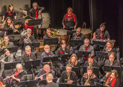 2020 01 12 - Théâtre de Sens - Musiciens de Brême-17