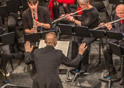 2020 01 12 - Théâtre de Sens - Musiciens de Brême-25