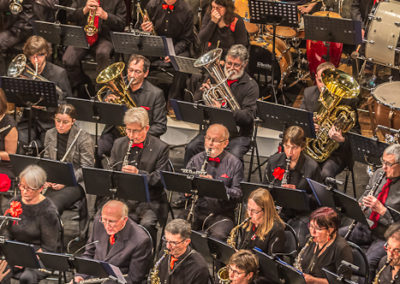 2020 01 12 - Théâtre de Sens - Musiciens de Brême-26