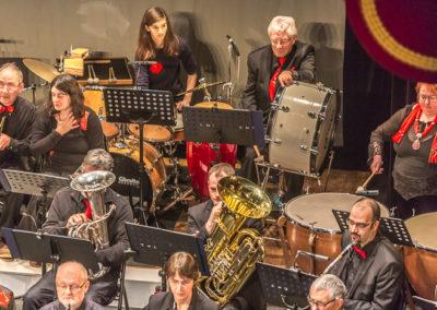 2020 01 12 - Théâtre de Sens - Musiciens de Brême-32